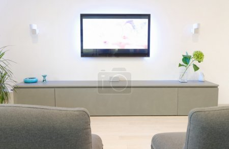 A modern living room with fllat tv and fancy sofa