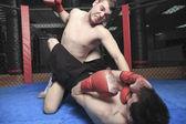 UFC Fighter