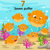 Illustrator of number seven puffer