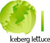 Illustrator of  font with iceberg lettuce
