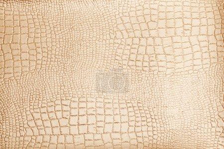 Photo pour Surface de fond de texture cuir - image libre de droit