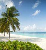 Paradise beach on a tropical island