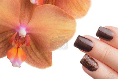 Brown nail polish on the nails.
