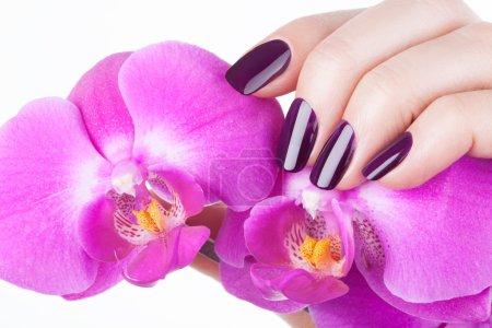 Photo pour Beaux ongles rouges et fleur close-up . - image libre de droit