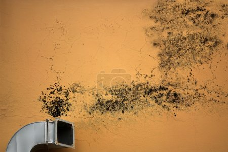 Photo pour A ventilation system is providing a mold with humidity to grow. - image libre de droit