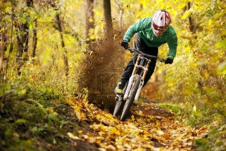 Mountain Bike Biker Forest Downhill Autumn