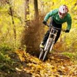 Mountainbiker rides in autumn forest...