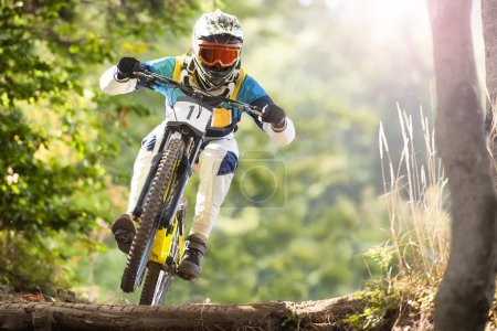 Photo for Mountainbiker rides in forest - Royalty Free Image