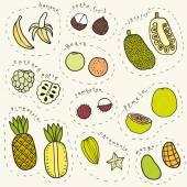 Set of hand drawn tropical fruits Vector EPS10 illustration