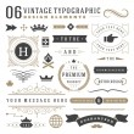 Retro vintage typographic design elements. Labels ...