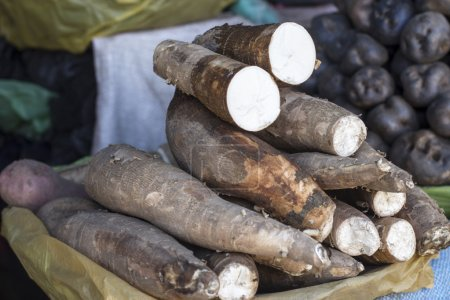 Whole manioc (cassava or yuka) at market place in Peru