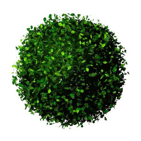 Planet Erde aus Blättern. Öko-Globus. Ball aus grünen Blättern isoliert auf weiß.