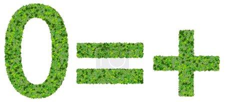 Photo pour Belle inscription faite de feuilles vertes isolés sur fond blanc. - image libre de droit