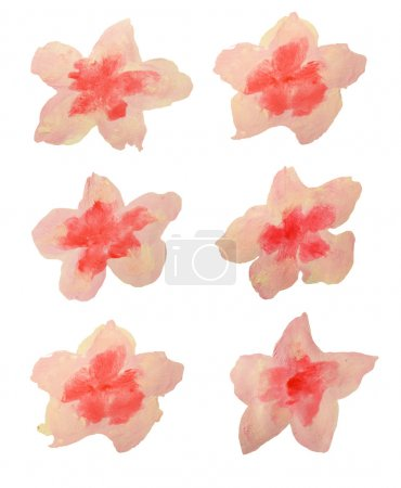 Set of beautiful watercolor flowers on white background