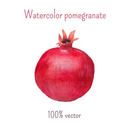 Watercolor pomegranate artwork