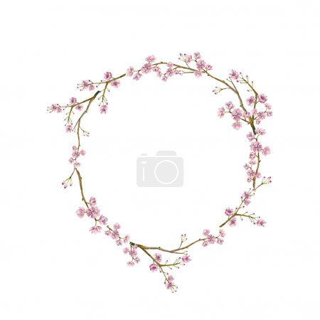 Illustration for Watercolor sakura wreath. Natural round frame with blossom cherry tree branches. Hand drawn japanese flowers illustration on white background - Royalty Free Image
