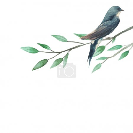 Swallow sitting on tree branch