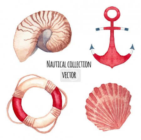Illustration for Watercolor nautical set. Set of hand painted sea objects: sea shells, lifebuoy ring, anchor. Vector nautical illustrations - Royalty Free Image