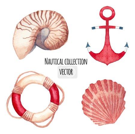 Illustration pour Ensemble nautique d'aquarelle. Ensemble d'objets de mer peints à la main : coquillages, anneau de bouée de sauvetage, ancre. Illustrations nautiques vectorielles - image libre de droit