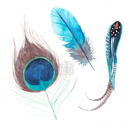 Watercolor exotic birds feathers set