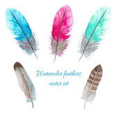 Watercolor birds feathers set Hand painted artistic elements Vector illustration