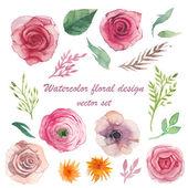 Watercolor herbs, ranunculus, anemone, roses