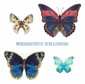 Watercolor butterfly set Various isolated butterfly hand drawn with aquarelle Wildlife vector clip art