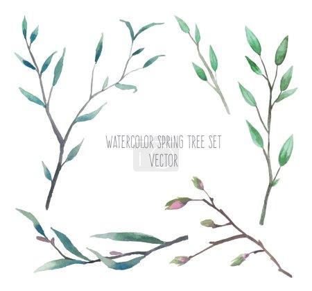 Illustration pour Aquarelle fleurs naturelles et branches ensemble illustration vectorielle - image libre de droit