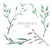 watercolor flowers and branches set