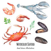 Watercolor seafood set