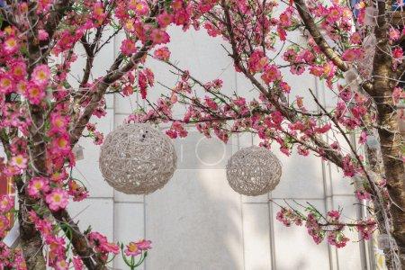 Photo pour Lanternes accrochent sur les branches des pêchers - image libre de droit