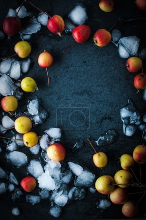 Frame of the apples in the snow on the dark background vertical
