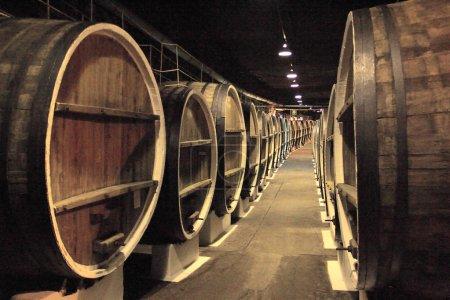 old wine cellars