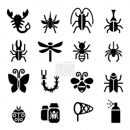 Bug & Insect icon set vector illustration  symbol