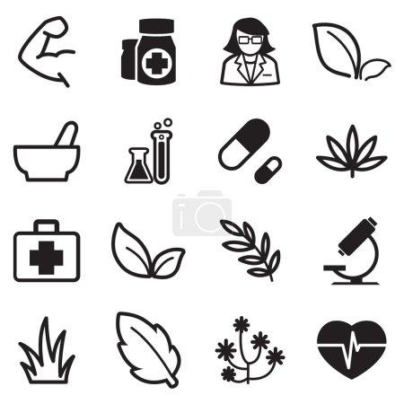 Illustration for Herb icons set illustration - Royalty Free Image