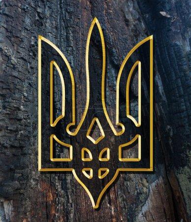 Photo pour Ukraine armoiries. Texture dorée sur bois - image libre de droit
