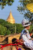 Become a novice on horse ,  Bagan in Myanmar (Burmar