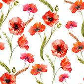 Akvarell pipacs virágok