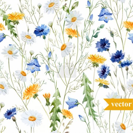Illustration for Watercolor chamomile, clover, bell, wildflowers vector   background - Royalty Free Image