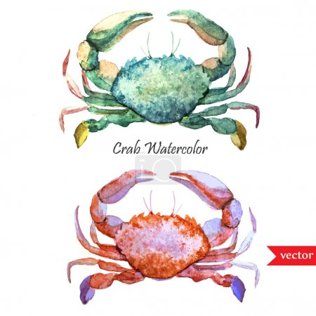 Watercolor ocean crabs