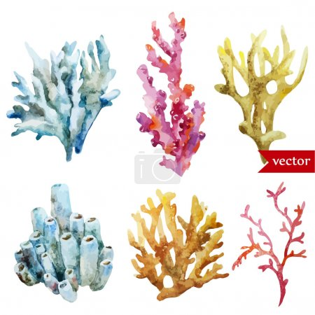 Watercolor corals set and ocean  sponge