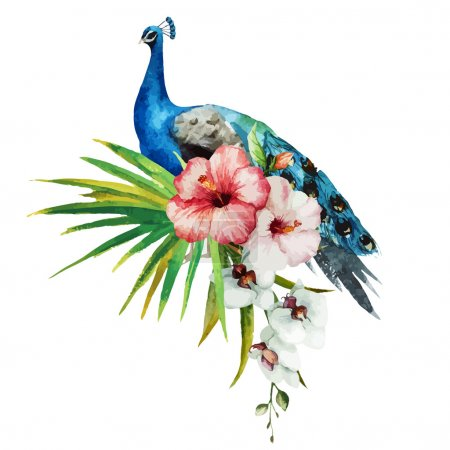 Illustration for Beautiful vector set with gentle watercolor hibiscus and peacock - Royalty Free Image