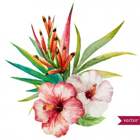 Illustration for Beautiful vector illustration with nice tropical flowers - Royalty Free Image