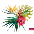 Beautiful vector illustration with nice tropical f...
