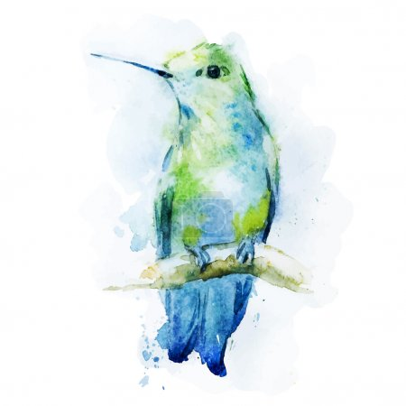 Photo for Beautiful vector image with nice watercolor colibri bird - Royalty Free Image
