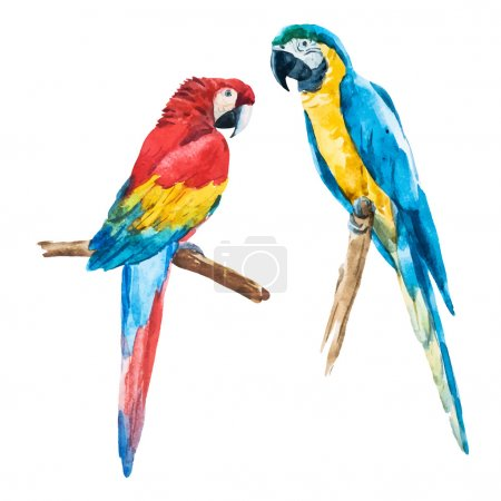 Illustration for Beautiful vector image with nice watercolor parrot - Royalty Free Image