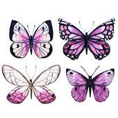 Vettore delle farfalle dellacquerello