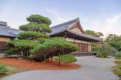 Big bonsai tree with Buddhist temple  in Kinkaku temple, Japan