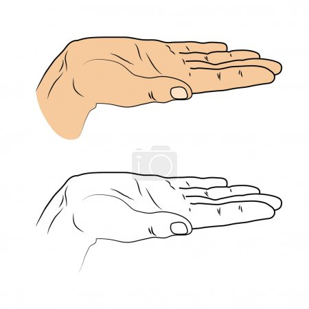 Open palm. Insulated black outline and colored drawn cropped hand on a white background. Gesture to give. Good for design submission, to represent something. Vector illustration