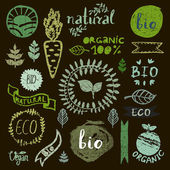 Paint logotypes set Badges labels leaves ribbons plants elements wreaths laurels Organic bio ecology eco natural design template Hand drawing painting Vintage vector green colors